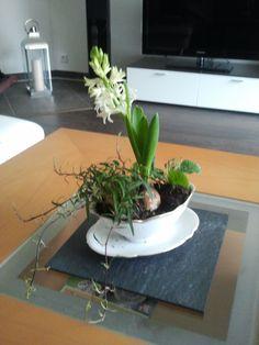 meine gr ne wellness oase dekorative pflanzen f rs bad dekoration pinterest deko und. Black Bedroom Furniture Sets. Home Design Ideas