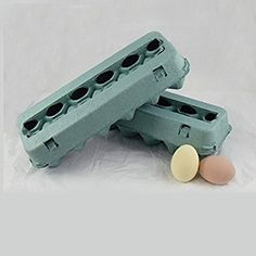 Fall Harvest Product Recycled Fiber Blank Egg Cartons, Teal, 25 Pack