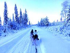 Wees eerlijk, wie word er nu niet betoverd door dit prachtige winter landschap.