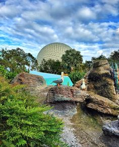 """Nemo's Spaceship Earth! Credit to: @tresha_disneylife Great shot Tresha! #disney #disneyside #disneyparks #epcot #waltdisney #nemo #waltdisneyworld…"""
