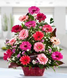 Esta espectacular canasta contiene 16 gerberas rosadas finamente arregladas con diversos follajes. Sin duda alguna le alegrara al día a la persona que las reciba!