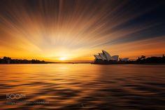 Opera House Sunrise by KieranStone #Landscapes #Landscapephotography #Nature #Travel #photography #pictureoftheday #photooftheday #photooftheweek #trending #trendingnow #picoftheday #picoftheweek