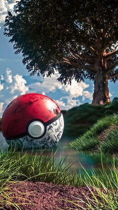 Catch them all. Ps Wallpaper, Game Wallpaper Iphone, Cute Pokemon Wallpaper, Graffiti Wallpaper, Cute Disney Wallpaper, Marvel Wallpaper, Galaxy Wallpaper, Wallpaper Maker, Lock Screen Wallpaper