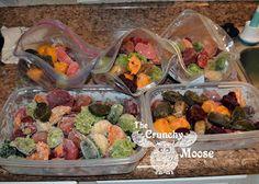 Organic Homemade Baby Food