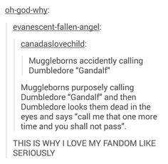 Muggleborns at Hogwarts are my spirit animal