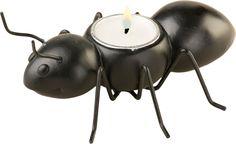 Ants Go Marching in Picnic Tea Light Holder
