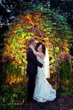Cariad Photography Blog: Glen Ella Springs Inn Wedding by North GA Photographer.