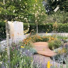 "GARDENFORM on Instagram: ""Celebrating a good year in 2019 with another RHS Gold Award  for the Phytosanctuary  constructed by the…"" In 2019, Garden Spaces, Garden Design, Awards, Construction, Celebrities, Gold, Instagram, Building"