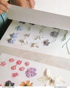 小さい頃に押し花をしたことはありませんか?この押し花をフレームに飾るなどして、素敵なインテリアに活用することができるのです。自分ですぐできるDIYの方法をご紹介します。