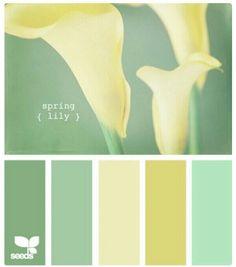 New kitchen colors schemes green design seeds ideas Colour Pallette, Color Palate, Colour Schemes, Color Combos, Paint Schemes, Paint Combinations, Green Palette, Beautiful Color Combinations, Color Trends