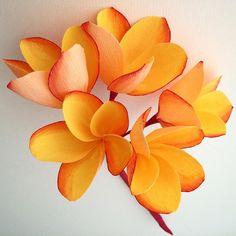 Paper plumeria. #paperflowers