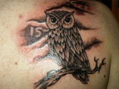 ... Owls Tattoo Night Owls Body Art Tattoo Design Pictures Amp Owl