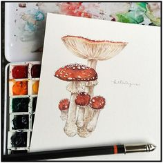 My favorite one! Fungus addicted. #linchianing #watercolor #watercolorpainting #fungus #fungi #painting
