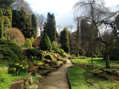 Ceremony Collection Campaign Setting: Fletcher Moss Gardens, Manchester