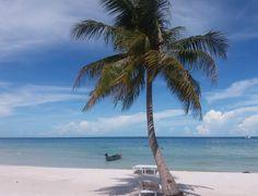 Am traumhaften Sao Beach im Südosten von Phu Quoc #taipan_Vietnam #vietnam #phuquoc