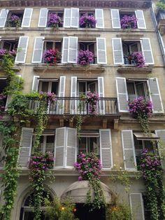 Paris flower boxes and shutters french france architecture gardens Balcon Juliette, Bon Weekend, Weekend Weather, Paris Love, Paris Paris, Paris Ville, Paris Apartments, Paris Travel, City Lights