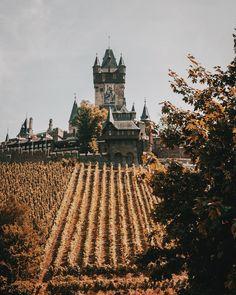 Cochem: Die besten Tipps für das historische Städtchen an der Mosel Vineyard, Germany, Outdoor, Wine Festival, Ruins, Old Town, Road Trip Destinations, Outdoors, Vine Yard
