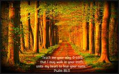 Psalm 86:11   http://www.fivefoldministryireland.com