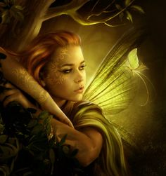 Faeries & Elves