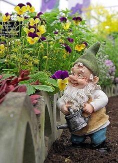 A garden with some gnomes