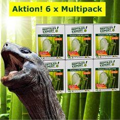 Jetzt UV-Lampen 6er-Pack Aktion bei Reptiles Expert! Superfrühjahrssonderpreise dieses Wochenende. Für alle Reptilien. Reptiles, Action