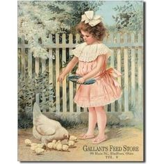Amazon.com: Gallant's Feed Store Girl Feeding Chickens Retro Vintage Tin Sign: Home & Kitchen