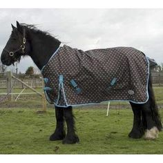 The Rhinegold Dottie Torrent Lightweight Turnout Rug has a 600 denier Ripstop waterproof outer and is fully cotton lined with no polyfill. Horse Rugs, Horse Care, Horses, Horse Stuff, Stables, Coolers, Pets, Barns, Blankets