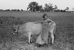 1938 Great Depression photo of Farmer's wife with cow, Southeast Missouri Farm Vintage Pictures, Old Pictures, Vintage Images, Old Photos, Antique Photos, Great Depression Photos, Shorpy Historical Photos, Historical Pictures, Farm Day