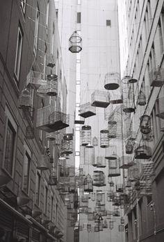 Bird cages, art installation in Sydney   Australia (by .natasha.)