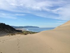 Sand dunes on the Oregon Coast in Pacific City