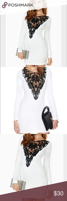 Nasty Gal lace front dress All items come from a clean, smoke and pet free home. These are brand new, never worn, but the paper sales tag is not attached. Nasty Gal Dresses Mini