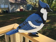 My oversized Blue Jay