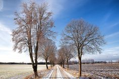 Samma allé som tidigare bild! Men helt annan känsla. Det är roligt att få fram olika typer av bilder med olika känslor! #springiscoming #vårkänslor #tolefors #linköping #ig_masterpiece #ig_landscape #visitsweden #ilovesweden #igscandinavia #ignature #igsweden #sweden_photolovers #ig_sweden #landskap #landscape #lkpg #meralink #östergötland