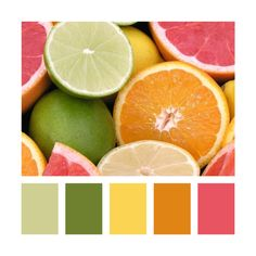 Citrus (lemon yellow, lime green, tangerine orange, and pink grapefruit) inspired color palette with a neutral base.