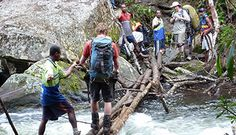 Kokoda Track with Getaway Trekking & Adventures Trekking, New Zealand, Track, Hiking, Australia, Adventure, Walks, Runway, Running