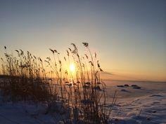 Winter, sun, frozen sea. Tallinn, Estonia, 2014