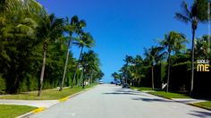 2016, week 3. Palm Beach - Florida (USA). Picture taken: 2015, 10