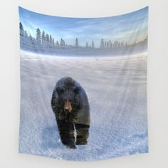 Animal Tracks - Black Bear in Snow by Skye Ryan-Evans In 3 sizes, our Wall Tapestries are made of 100% lightweight polyester with hand-sewn finished edges. Featuring vivid colors and crisp lines, these highly unique and versatile tapestries are durable enough for both indoor and outdoor use. Machine washable for outdoor enthusiasts. https://society6.com/product/animal-tracks-black-bear-in-snow-n9d_tapestry?curator=skyeryanevans
