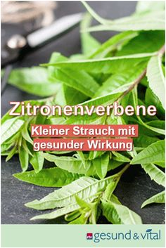Kraut, Witchcraft, Gardening, Vegetables, Food, Roots, Medicinal Plants, Interesting Facts, Nature