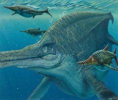 Shonisaurus popularis, Todd Marshall