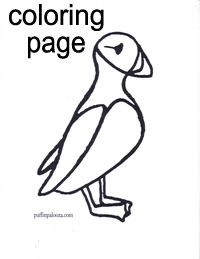Puffin Coloring Page 3 A Team, Stained Glass, Coloring Pages, Compassion, Image Search, Quote Coloring Pages, Kids Coloring, Stained Glass Panels, Leaded Glass