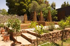 potager in process Garden Design, Wallpaper, Interior, Plants, Indoor, Wallpapers, Landscape Designs, Interiors, Plant