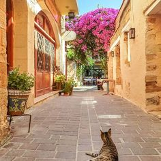#chania #crete #greece.