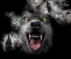 Lycan Anubis Armando I'm still not eating solids yet. Wolf Tattoo Design, Fantasy Wolf, Dark Fantasy Art, Natur Tattoo Arm, Tier Wolf, Wolf Hybrid, Wolf Tattoos Men, Angry Wolf, Wolf Tattoo Sleeve