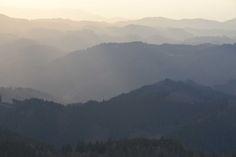 Ein- und Aussichten – Eine heilsame Unterbrechung mitten in der Woche im Nationalpark Schwarzwald Achtsamkeitsnachmittage laden zum Aussteigen aus dem alltäglichen Erledigungsmodus ein Foto: Blick vom Schliffkopf (Rebbe)  http://www.schwarzwald-nationalpark.de/fileadmin/_schwarzwald/Pressemitteilungen/PM_Ein-Aussichten_07062016.pdf