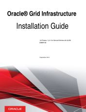 Oracle Grid Infrastructure Installation Guide for Microsoft Windows