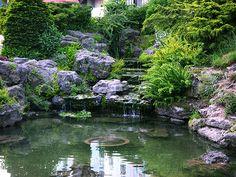 Vsúčasnosti začína byť čoraz viac trendom mať doma vlastné záhradné jazierko. Podobne, ako vprírode, aj voda vzáhrade vytvára dojem avykonáva nenahraditeľnú úlohu prirodzeného prostredia. A zároveň sa takýmto jazierkom môžete pochváliť medzi známymi. Dôvody pre záhradné jazierko sú rôzne. Svojpomocná výstavba záhradného jazierka začína ešte predtým surčením rozpočtu. Najviac nákladnými časťami pri stavbe bude jazierková …