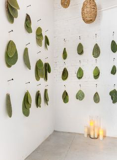 Creative Ways To Wall Display House Plants With Cactus - TopDesignIdeas Mexican Restaurant Decor, Restaurant Design, Restaurant Ideas, Decoration Inspiration, Inspiration Wall, Decor Ideas, The Now Massage, Cactus, Deco Floral