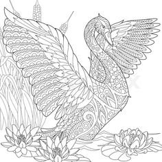 Stock vector of 'Stylized beautiful swan among water lilies (lotus flowers) and reed grass. Freehand sketch for adult anti stress coloring book page with doodle and zentangle elements.'