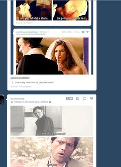 """band-members-steal-razors: """" assemble-the-assbutts: """" waitingforthetardistocome: """" this just happened on my dash and i'm dying laughing. """" THIS IS JUST TOO PERFECT """" omg this is impossible """""""